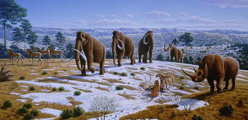 Pleistocene_Fauna_Northern_Spain_Mauricio_Antón