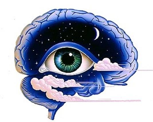 ver-con-el-cerebro-adictamente.blogspot.com