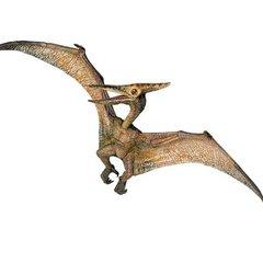 h.pteranodon_1258035886