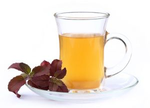 Cup of herbal tea with red tulsi leaves over white background